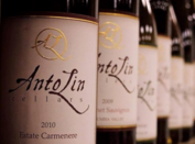 AntoLin Cellars