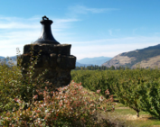 Garnier Vineyards at Mayerdale