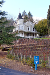 St. Clement Vineyards