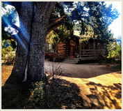 Juniper Well Ranch & Vineyards